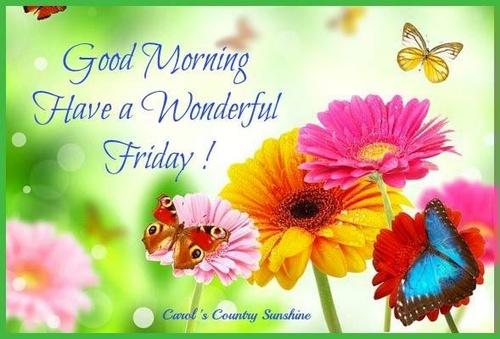 Have A Wonderful Friday Good Morning-wm138