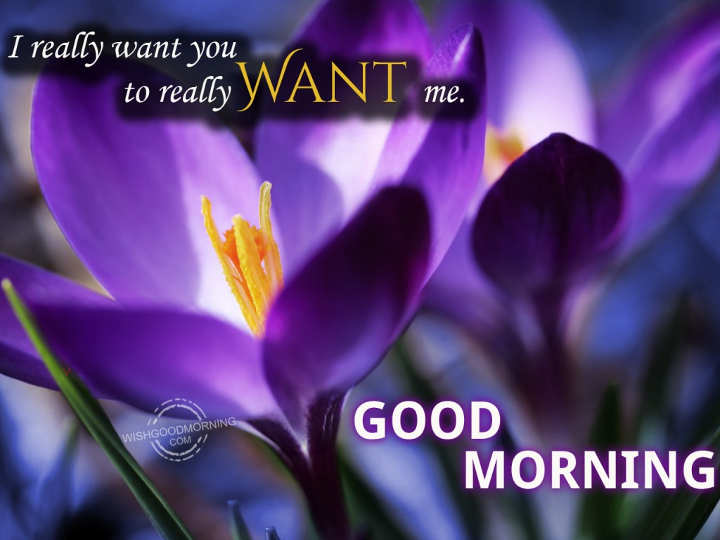 Good morning wishes for husband pictures images i really want you good morning kristyandbryce Choice Image