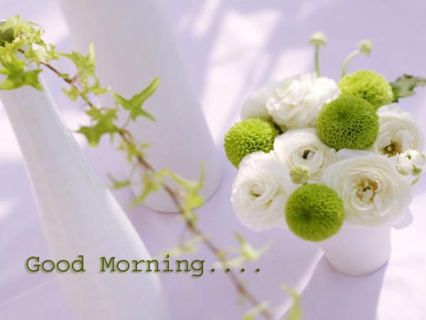 Morning Pic