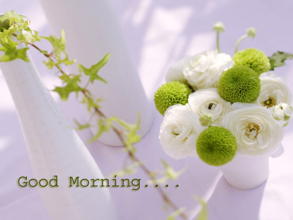 Good Morning Monday In French : Morning pic