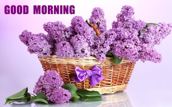Sending U Bautiful Flowers On Good Morning-wm13129