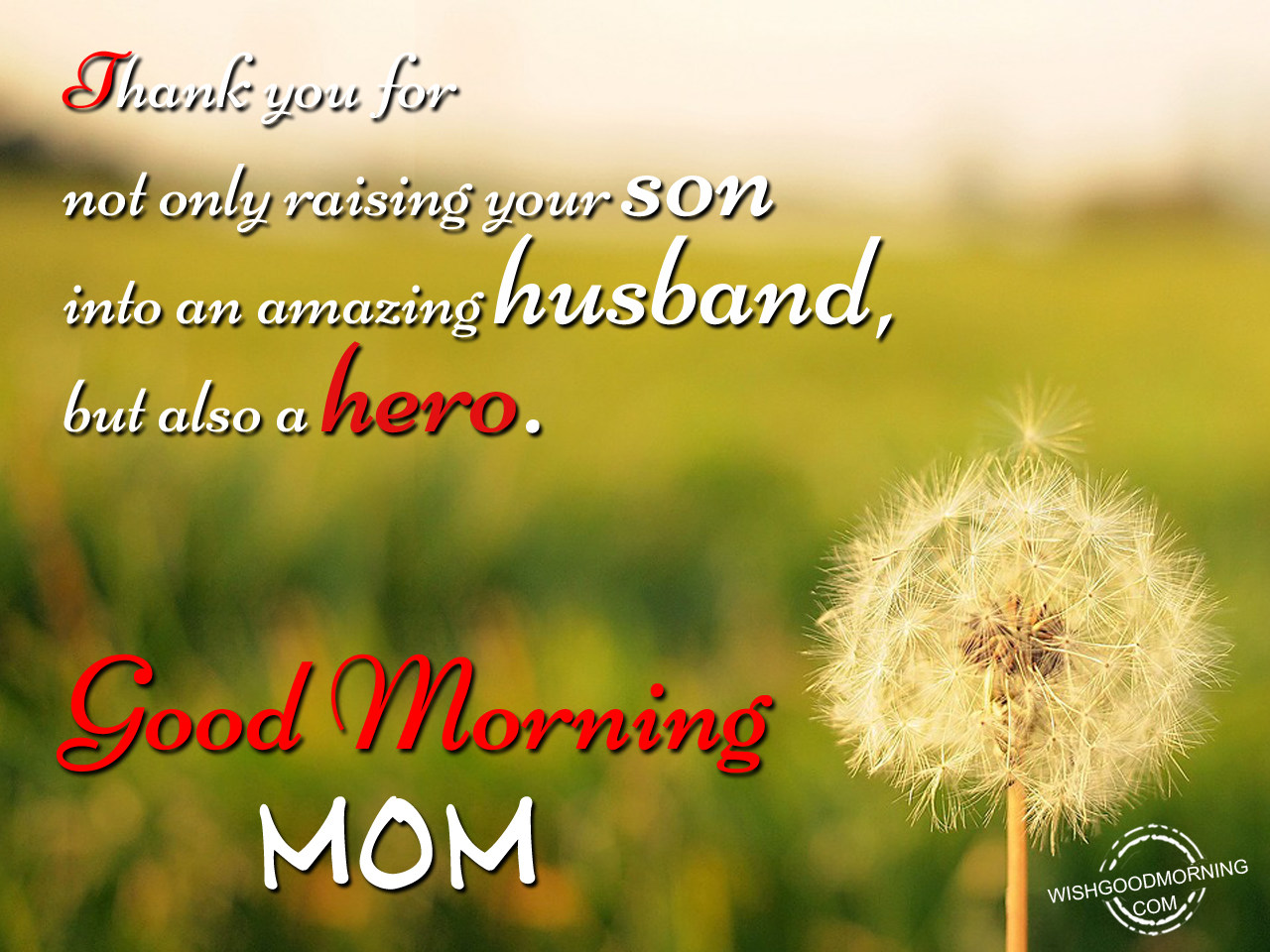 Good Morning Wishes For Mother In Law Pictures Images