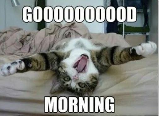 Very Good Morning-wm1148