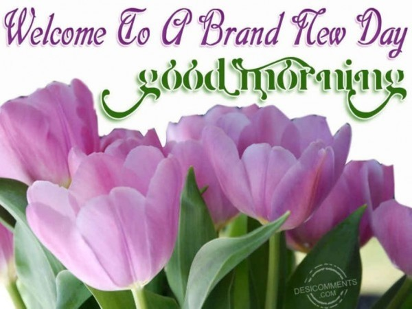 Welcome To A Brand New Day Good Morning-wm13136