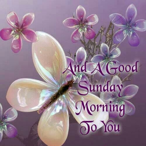 A Happy Sunday Morning To You-wg015003
