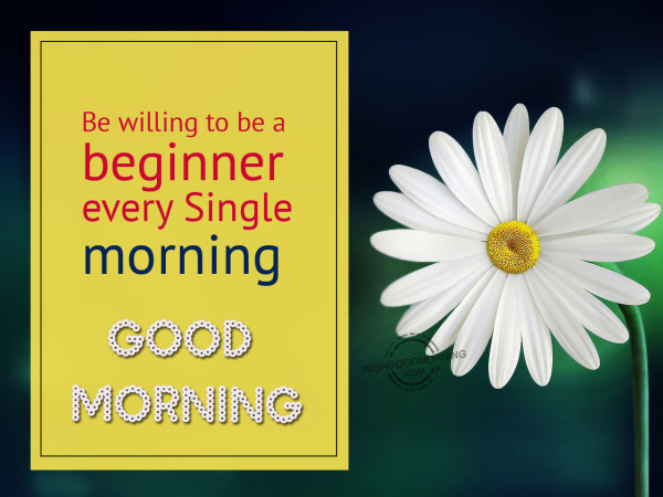 Be Willing To Be A Beginner-wm14