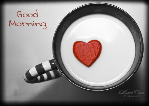 Good Morning Beautiful My Love : Beautiful good morning my love