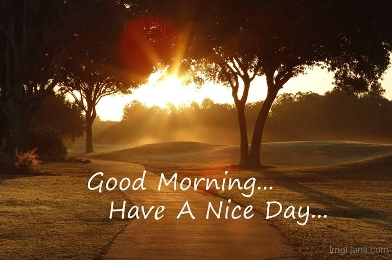 Natural Images Morning