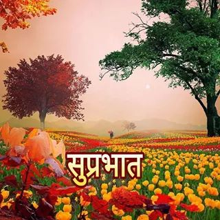 Beautiful Shubh Parbhat Picture-wm002