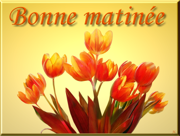 Bonne Matinée With Beautiful Flower