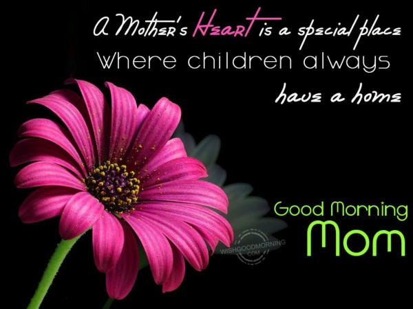 Children Always Have A Home-Good Morning-wg9504
