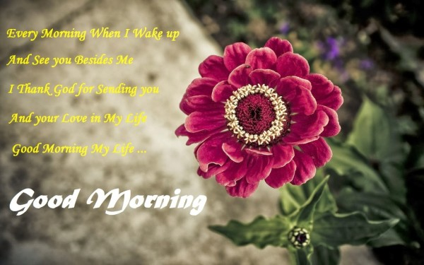Every Morning I Wake Up !-wg017010