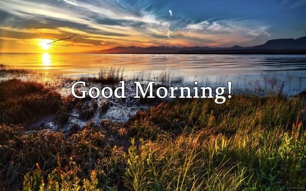 Good Morning - Sunshine Image-wg03405