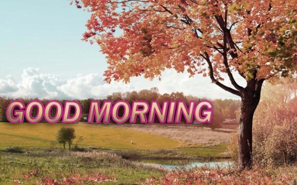 Good Morning - Autumn-wg017017