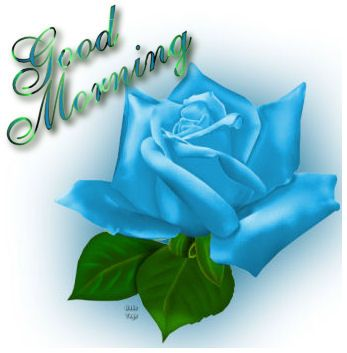 Top 100+ Blue Rose Good Morning Image - HD Greetings Images