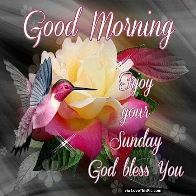 Good Morning  Enjoy Your Sunday