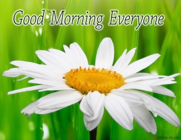 Good Morning Everyone Deutsch : Good morning everyone
