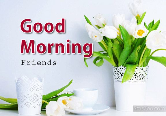 Good Morning Friends Tulips
