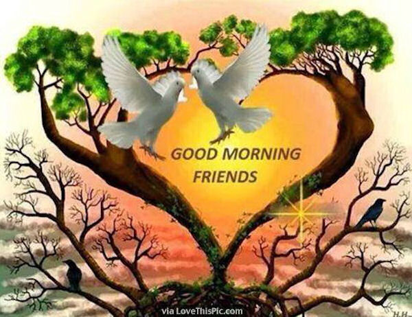 Good Morning - Friends-wg01624