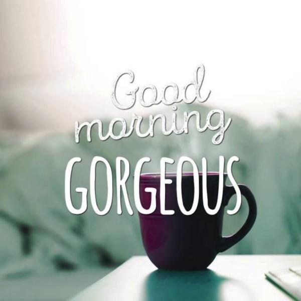 Good Morning Gorgeous !-wg01328