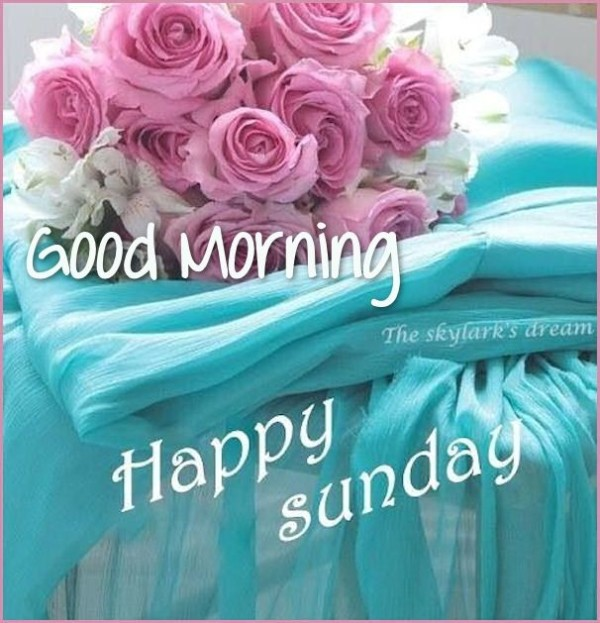 Good Morning Happy Sunday !!-wg0705