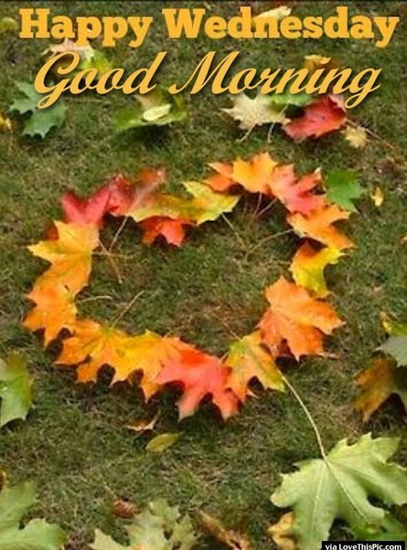 Good Morning - Happy Wednesday !-wg01626