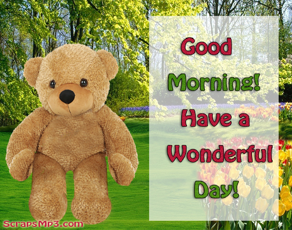 Good Morning Have a Wonderful day-wg01730