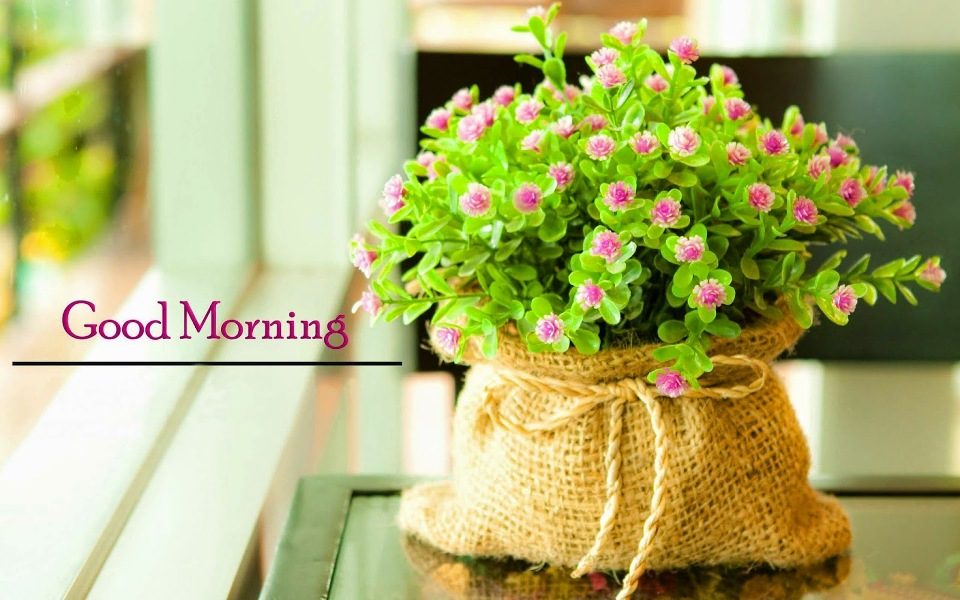 Good Morning Wishes With Flowers Pictures, Images - Page 63