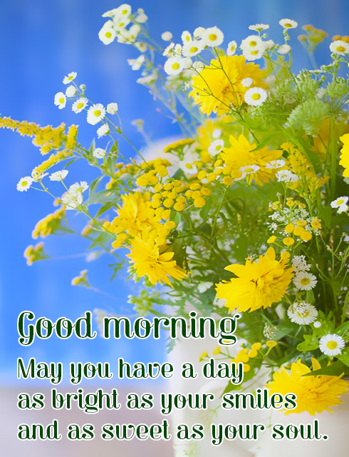 Good Morning May You Hav A Day Bright As Your Smile