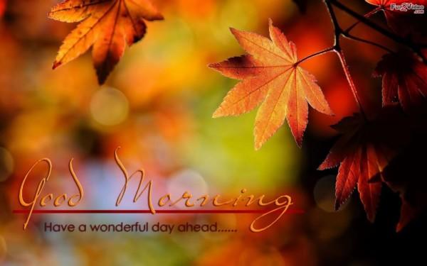 Good Morning My Dear-wg017084