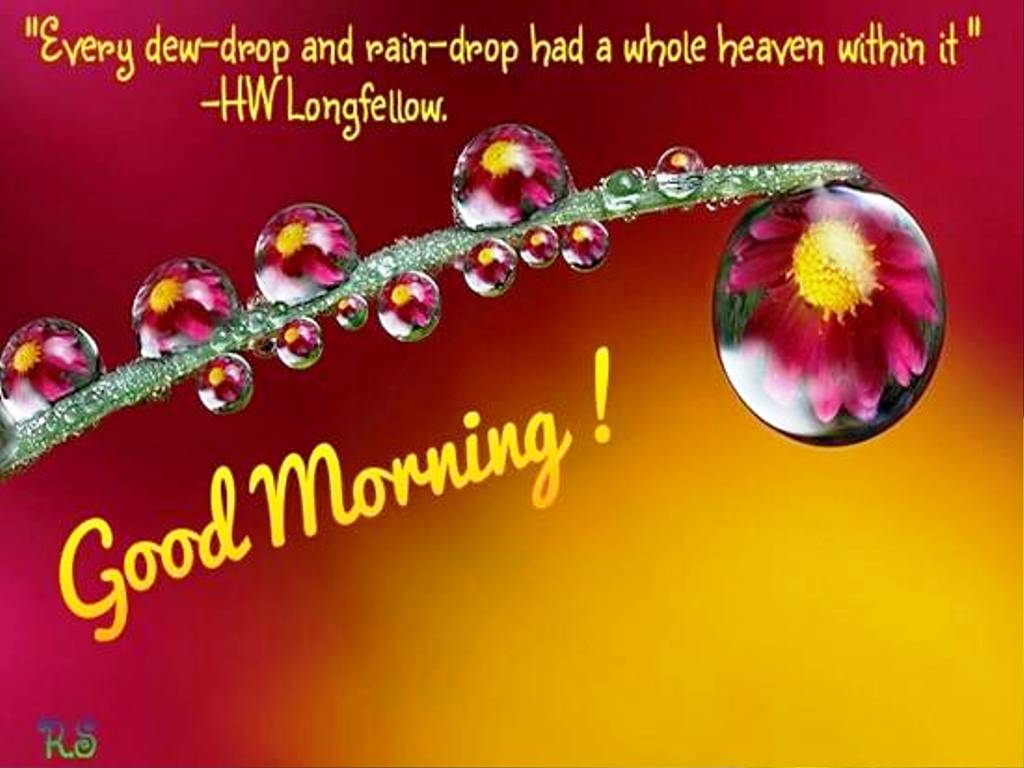 Good Morning Dear Images : Good morning my dear