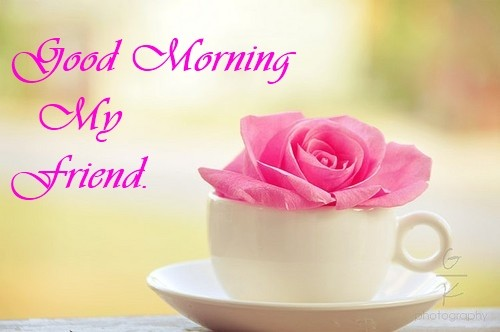 Good Morning Wishes For Friend Pictures Images Page 31