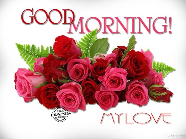 Good Morning My Love With Red Roses-wg017086