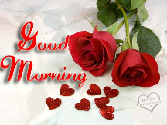 Good Morning My Love With Red Roses