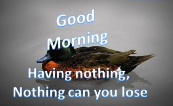 Good Morning - Nothing Can Lose-wg01312