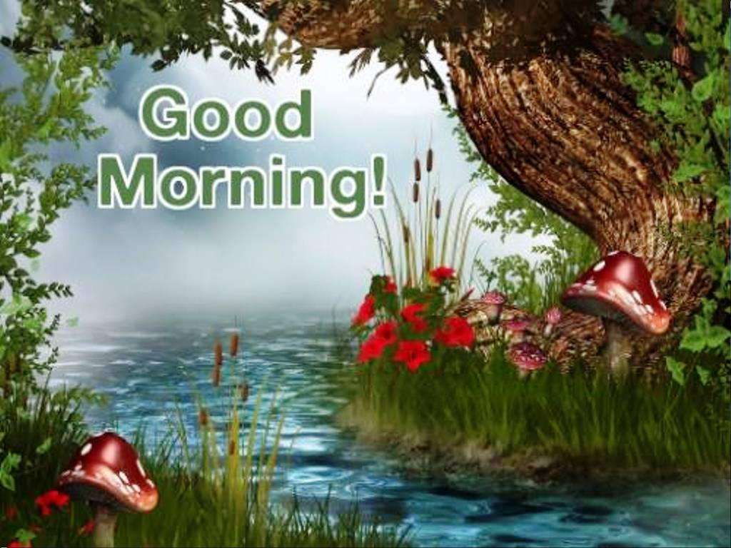 Good Morning Wishes Pictures Images Page 54