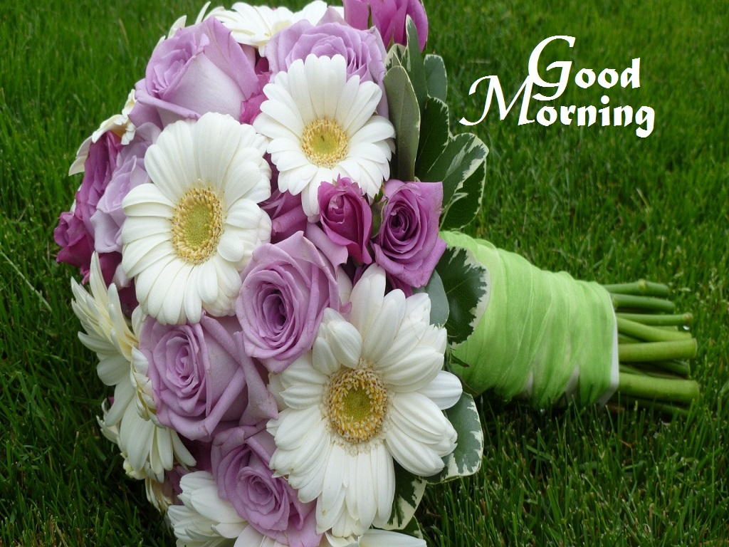 Good Morning Wishes With Flowers - 302.3KB