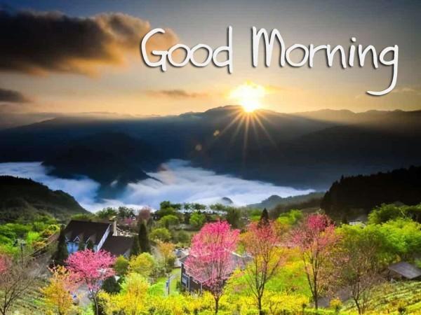Good Morning Sun Has Risen