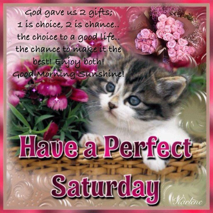 Good Morning Wishes On Saturday Pictures Images Page 7