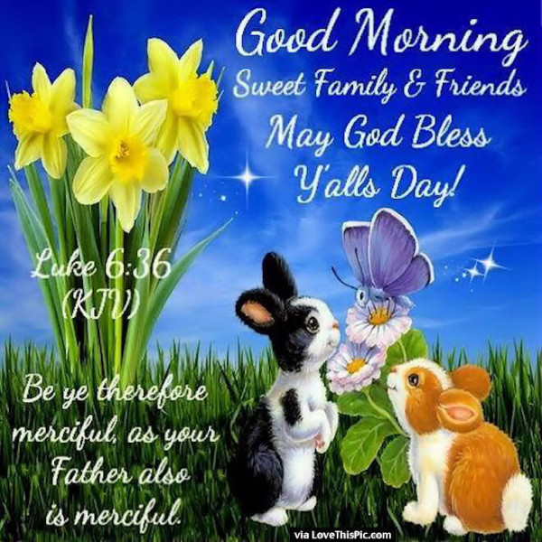 Good Morning Sweet Family And Frinds-wg06508