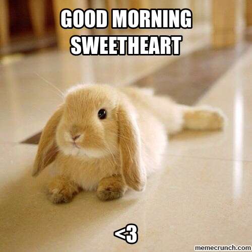 Good Morning Sweet Cheeks In Spanish : Good morning wishes for sweetheart pictures images page