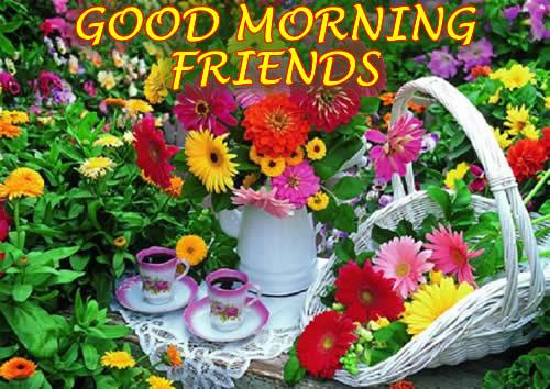 Good Morning - Tea In Flowers-wg03304