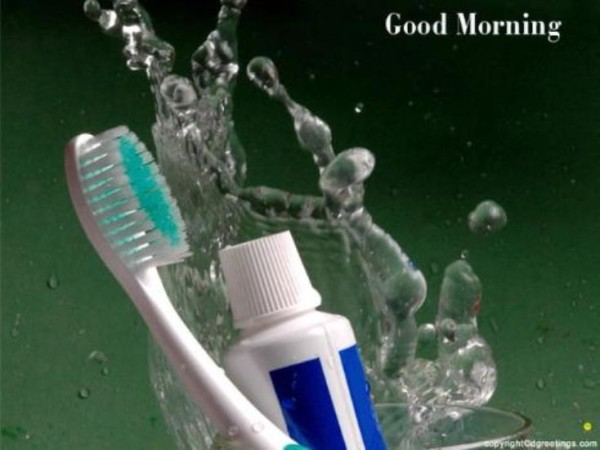 Good Morning-Time To Brush-wg03412