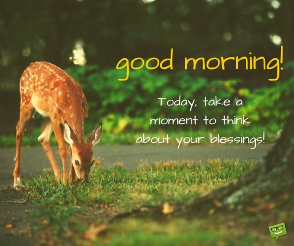 Good Morning - Today Take A Moment To Think-wg01007