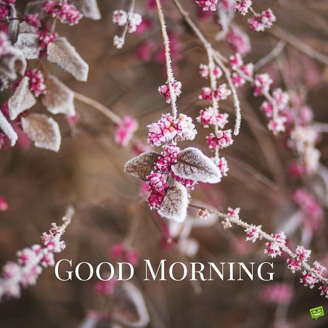 Good Morning Winter Sms : Good morning winter