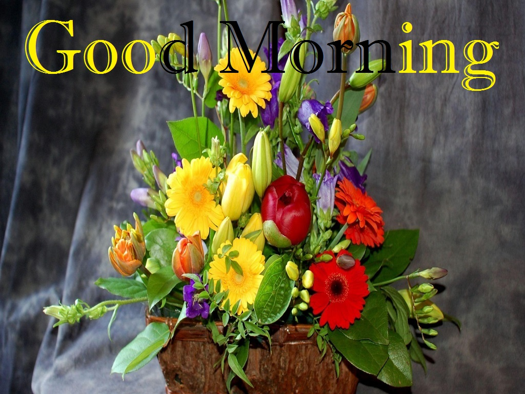 Good morning wishes with flowers pictures images page 64 good morning with bouquet of flowers izmirmasajfo