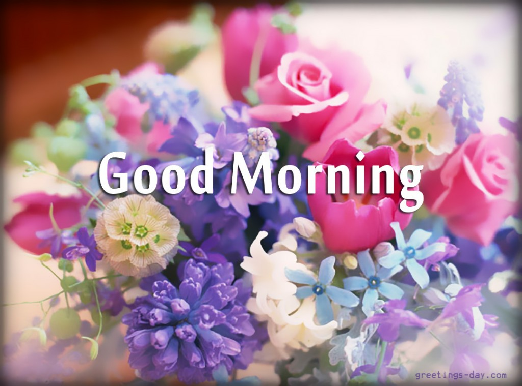 Good Morning With Colorful Flowers