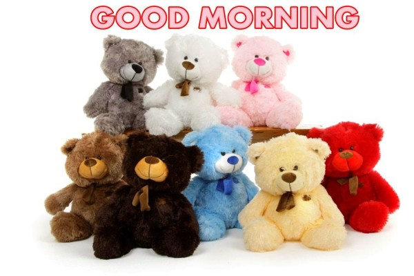 Good Morning With Colorful Teddy-wm1827
