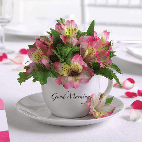 Good Morning With Decorative Cup-wg017102