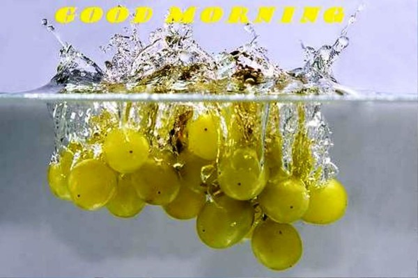 Good Morning With Grapes-wg01344